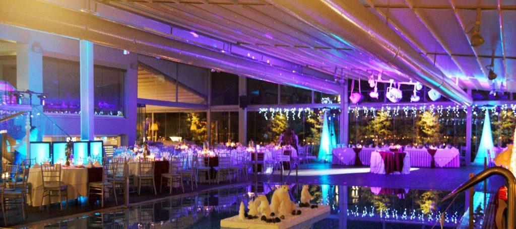 WEDDING DJS IN GREECE ATHENS DJ ΓΑΜΟΥ ΓΑΜΩΝ 5 ELEMENTS EFFECT LIGHTS SET UP